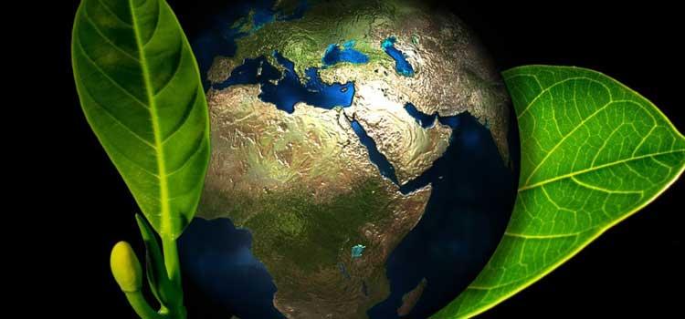 responsabilidad-medioambiental-transporte