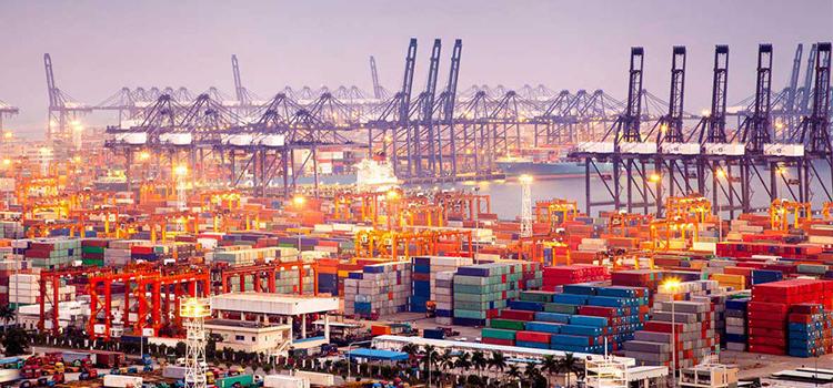 exportaciones raras