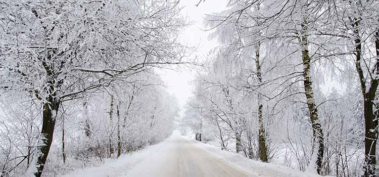 Navidad en la carretera